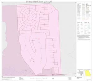 Primary view of object titled '2010 Census County Block Map: Tyler County, Inset E01'.
