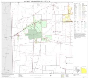 Primary view of object titled '2010 Census County Block Map: Grayson County, Block 12'.