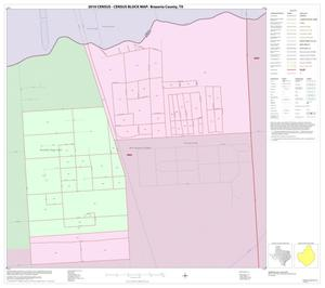 Primary view of object titled '2010 Census County Block Map: Brazoria County, Inset A01'.