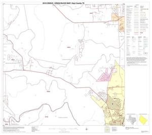 Primary view of object titled '2010 Census County Block Map: Hays County, Block 9'.