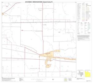 Primary view of object titled '2010 Census County Block Map: Grayson County, Block 13'.