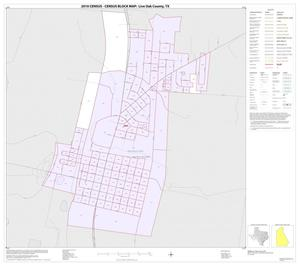 Primary view of object titled '2010 Census County Block Map: Live Oak County, Inset B01'.