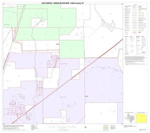 Primary view of object titled '2010 Census County Block Map: Collin County, Block 25'.