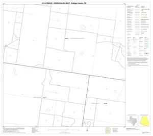 Primary view of object titled '2010 Census County Block Map: Hidalgo County, Block 41'.
