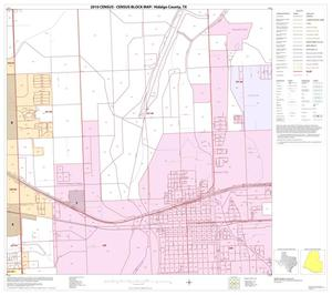Primary view of object titled '2010 Census County Block Map: Hidalgo County, Block 102'.
