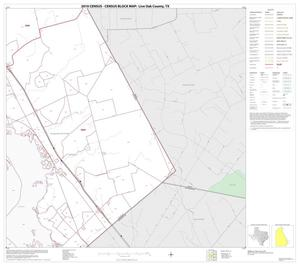 Primary view of object titled '2010 Census County Block Map: Live Oak County, Block 16'.
