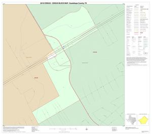 Primary view of object titled '2010 Census County Block Map: Guadalupe County, Inset A01'.