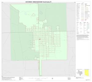 Primary view of object titled '2010 Census County Block Map: Duval County, Inset A01'.