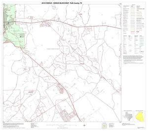 Primary view of object titled '2010 Census County Block Map: Polk County, Block 20'.