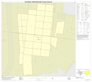 Primary view of object titled '2010 Census County Block Map: Cameron County, Inset D01'.