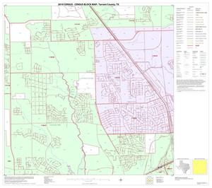 Primary view of object titled '2010 Census County Block Map: Tarrant County, Block 19'.