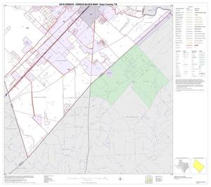 Primary view of object titled '2010 Census County Block Map: Hays County, Block 17'.