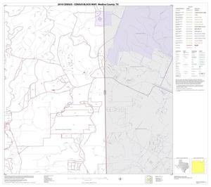 Primary view of object titled '2010 Census County Block Map: Medina County, Block 10'.