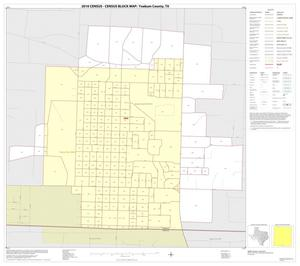 Primary view of object titled '2010 Census County Block Map: Yoakum County, Inset C01'.