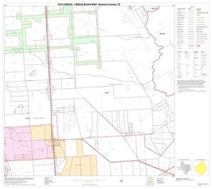 Primary view of object titled '2010 Census County Block Map: Brazoria County, Block 10'.