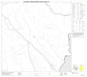 Primary view of object titled '2010 Census County Block Map: Brewster County, Block 79'.