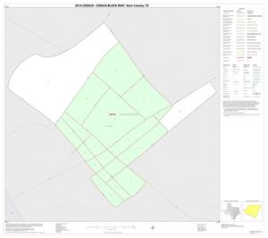 Primary view of object titled '2010 Census County Block Map: Starr County, Inset A01'.