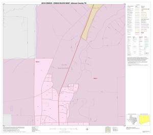 Primary view of object titled '2010 Census County Block Map: Johnson County, Inset E01'.