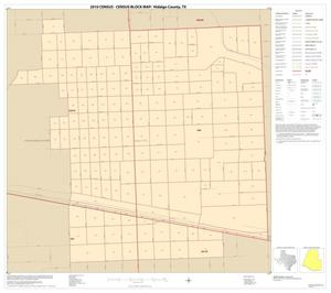 Primary view of object titled '2010 Census County Block Map: Hidalgo County, Inset W01'.