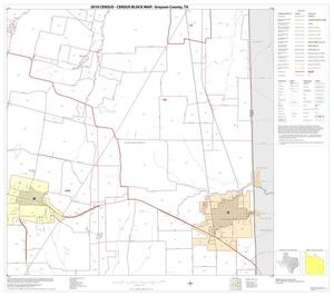 Primary view of object titled '2010 Census County Block Map: Grayson County, Block 21'.