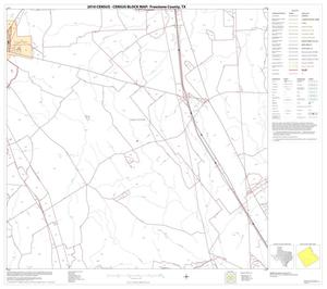 Primary view of object titled '2010 Census County Block Map: Freestone County, Block 13'.