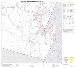 Primary view of object titled '2010 Census County Block Map: Burnet County, Block 20'.