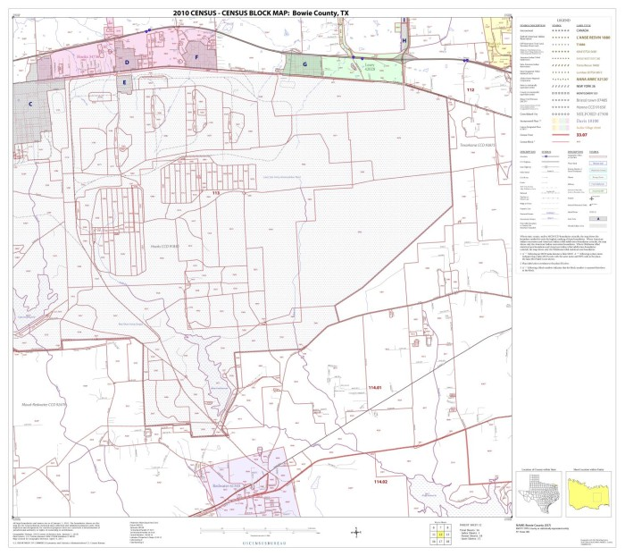 2010 Census County Block Map Bowie County Block 12 The Portal to
