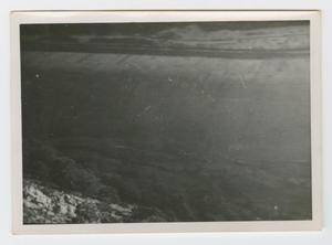 Primary view of object titled '[Photograph of Trees from a Mountain]'.