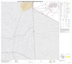 Primary view of object titled 'P.L. 94-171 County Block Map (2010 Census): Marion County, Block 7'.