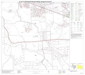 Primary view of object titled 'P.L. 94-171 County Block Map (2010 Census): Montgomery County, Block 20'.