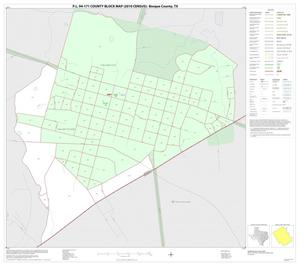 Primary view of object titled 'P.L. 94-171 County Block Map (2010 Census): Bosque County, Inset K01'.