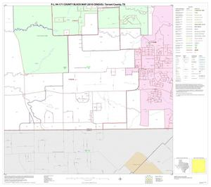 Primary view of object titled 'P.L. 94-171 County Block Map (2010 Census): Tarrant County, Block 59'.