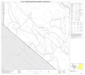 Primary view of object titled 'P.L. 94-171 County Block Map (2010 Census): Terrell County, Block 13'.