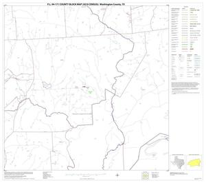 Primary view of object titled 'P.L. 94-171 County Block Map (2010 Census): Washington County, Block 19'.