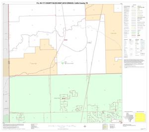 Primary view of object titled 'P.L. 94-171 County Block Map (2010 Census): Collin County, Block 30'.