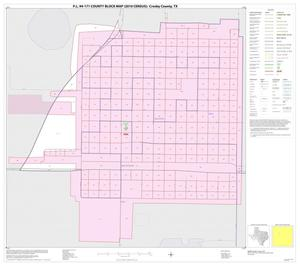 Primary view of object titled 'P.L. 94-171 County Block Map (2010 Census): Crosby County, Inset B01'.