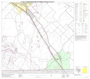 Primary view of object titled 'P.L. 94-171 County Block Map (2010 Census): Montague County, Block 16'.