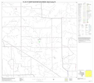 Primary view of object titled 'P.L. 94-171 County Block Map (2010 Census): Baylor County, Block 11'.