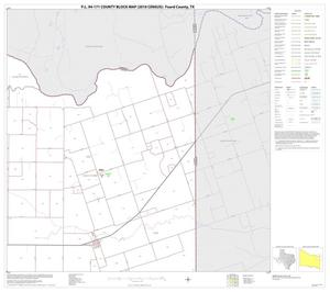 Primary view of object titled 'P.L. 94-171 County Block Map (2010 Census): Foard County, Block 6'.