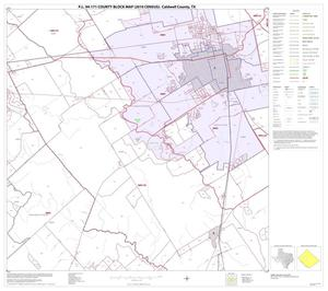 Primary view of object titled 'P.L. 94-171 County Block Map (2010 Census): Caldwell County, Block 9'.