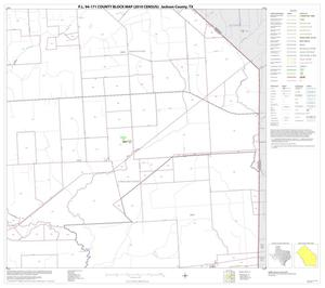 Primary view of object titled 'P.L. 94-171 County Block Map (2010 Census): Jackson County, Block 12'.