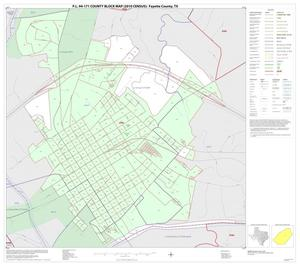 Primary view of object titled 'P.L. 94-171 County Block Map (2010 Census): Fayette County, Inset E01'.