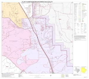 Primary view of object titled 'P.L. 94-171 County Block Map (2010 Census): Bexar County, Block 9'.