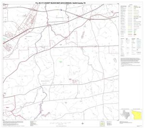 Primary view of object titled 'P.L. 94-171 County Block Map (2010 Census): Smith County, Block 13'.