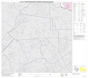 Primary view of object titled 'P.L. 94-171 County Block Map (2010 Census): Montgomery County, Block 45'.