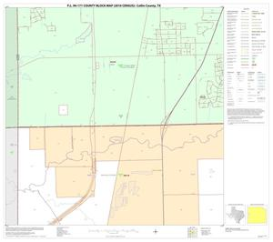 Primary view of object titled 'P.L. 94-171 County Block Map (2010 Census): Collin County, Block 40'.