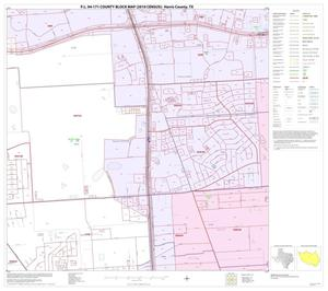 Primary view of object titled 'P.L. 94-171 County Block Map (2010 Census): Harris County, Block 113'.