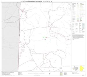 Primary view of object titled 'P.L. 94-171 County Block Map (2010 Census): Brewster County, Block 16'.