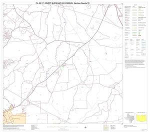 Primary view of object titled 'P.L. 94-171 County Block Map (2010 Census): Harrison County, Block 9'.