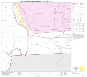 Primary view of object titled 'P.L. 94-171 County Block Map (2010 Census): Fort Bend County, Block 52'.